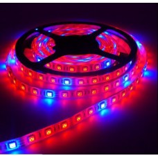 Taśma LED 5050  60L/m do wzrostu roślin czerwono-niebieska